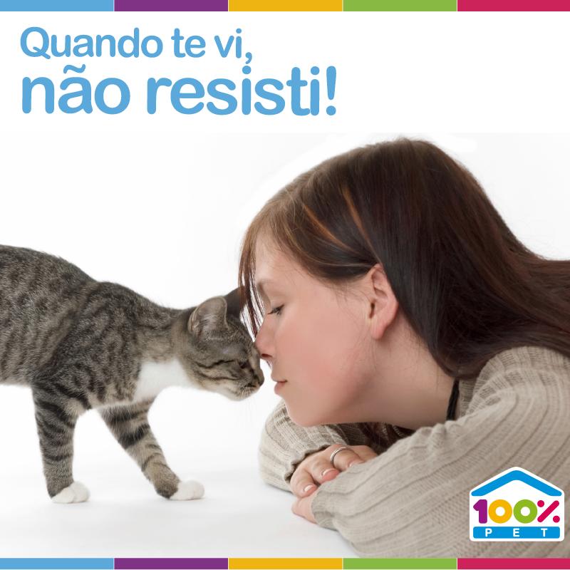 Carinho entre mulher e gatinho - 100% Pet