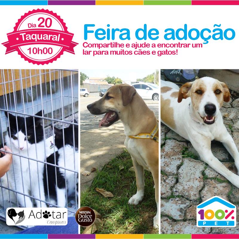 Feira de adoção 100% Pet