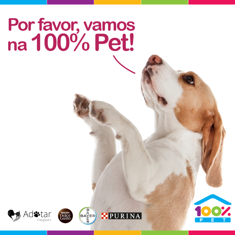 Super Evento hoje na 100% Pet