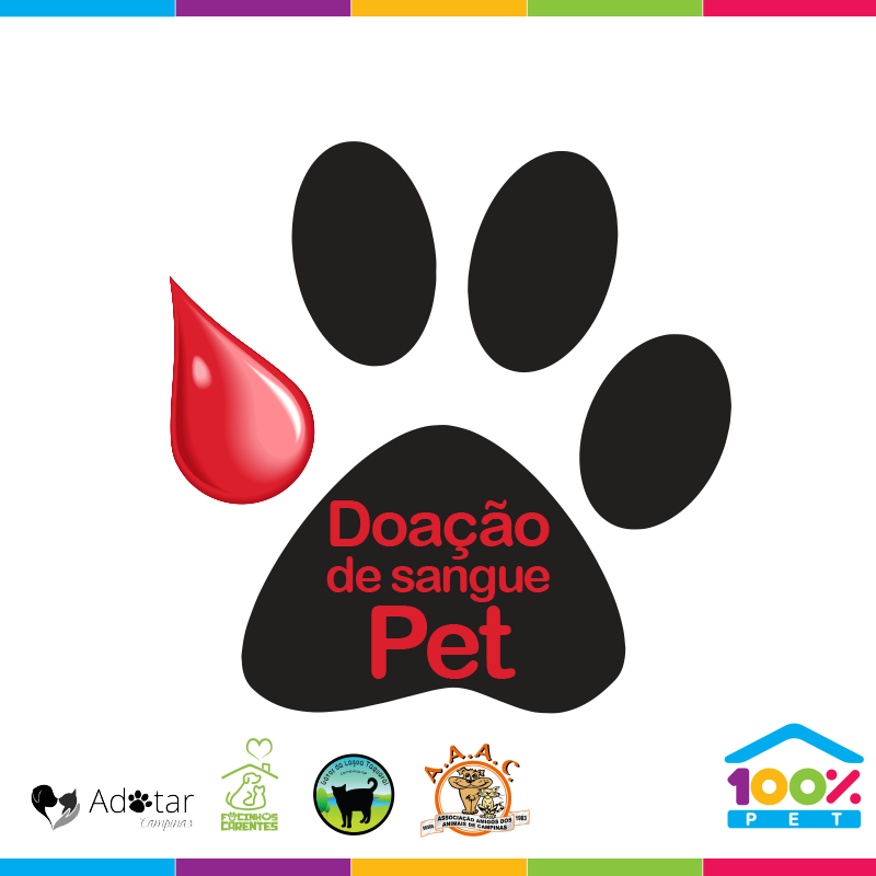 Dia mundial do Doador de Sangue - 100% Pet