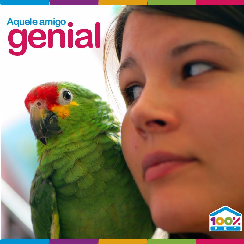 Amigo genial - 100% Pet