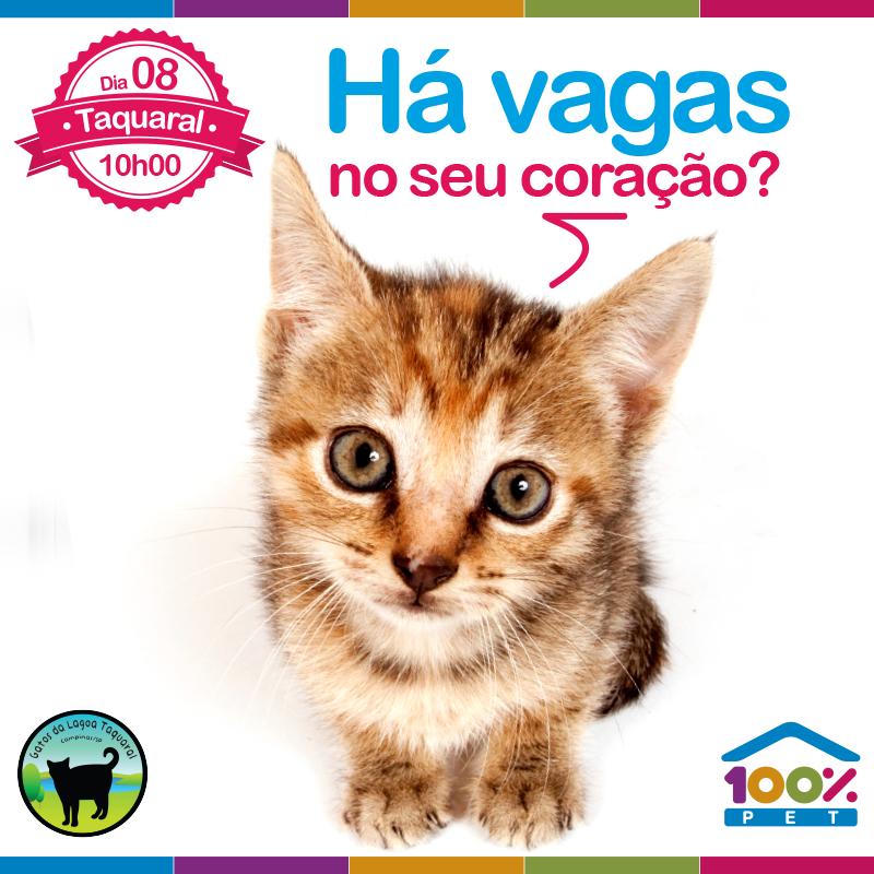 Feira de adoção no Taquaral - 100% Pet