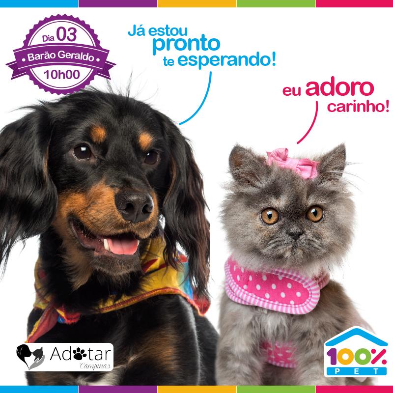 Feira de Adoção - 100% Pet
