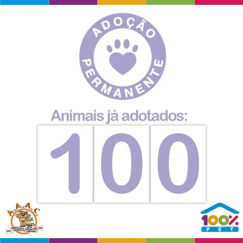 100 animais adotados