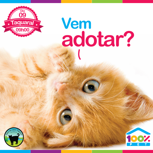 Feira de adoção - ONG Gatos da Lagoa do Taquaral