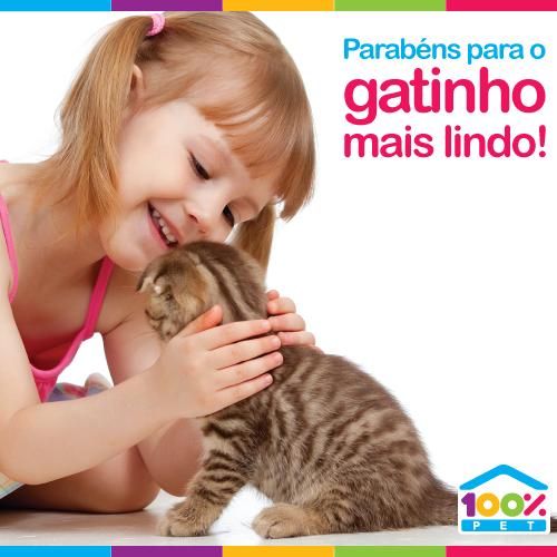 Parabéns para todos os gatinhos